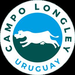 Logo Campo Longley